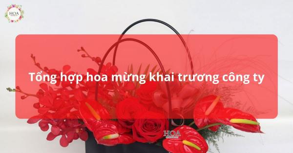Hoa mừng khai trương công ty   Nên chọn hoa gì
