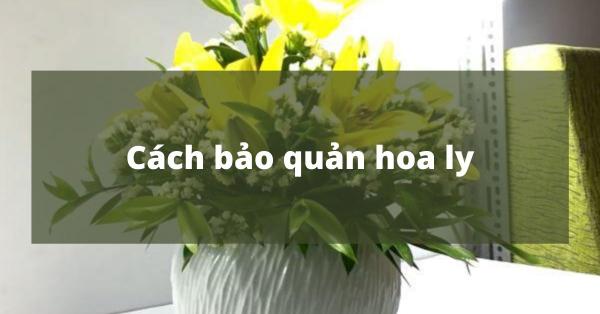 [Hướng dẫn] Cách bảo quản hoa ly tươi lâu
