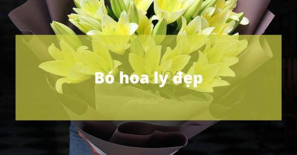 Bí quyết chọn bó hoa ly đẹp
