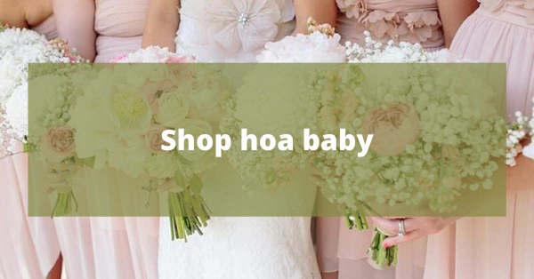 Địa chỉ shop hoa baby tại TP.HCM
