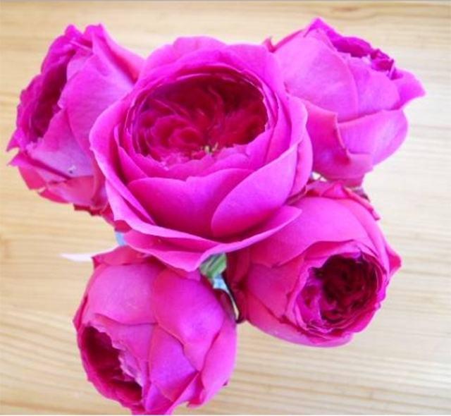 Hoa hồng nhập khẩu TPHCM - Hình 3