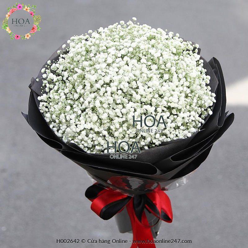 Ý nghĩa của hoa Baby - Ảnh 2