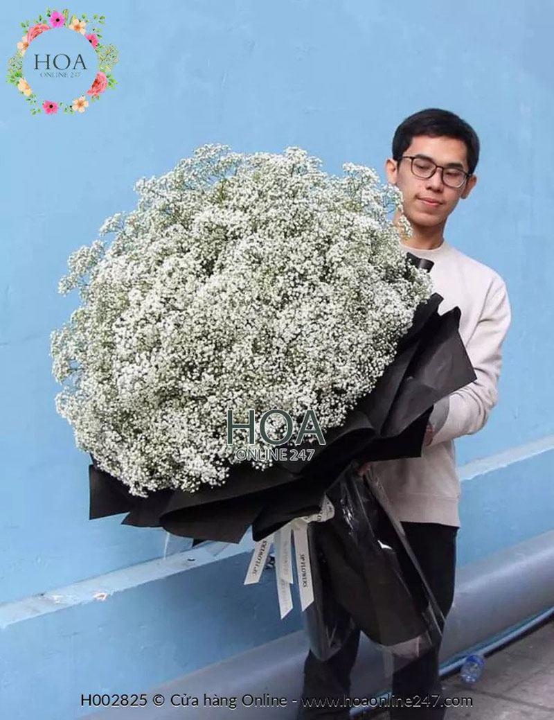Ý nghĩa của hoa baby - hoa baby bó lớn